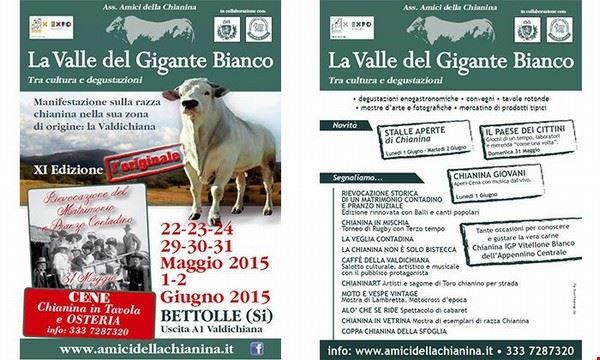 la_valle_del_gigante_bianco