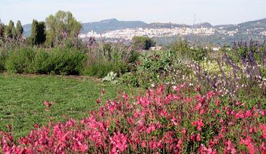 giardino_delle_salvie_assisi_il_lavandeto_di_assisi