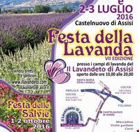 festa__della_lavanda_a_castelnuovo_di_assisi