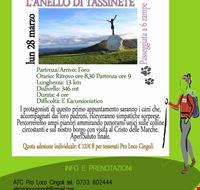 locandina_l_anello_di_tassinete_cingoli