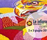 Infiorata_Di_Spello(1).jpg