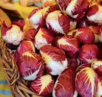 basket-of-red-chicory-for-sale-picture-id913991906.jpg