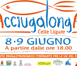 Acciugalonga_a_Celle_Ligure.png