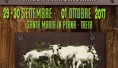 Treia-santa-maria-in-piana-festiva-della-carne-bovina-di-razza-marchigiana-2017.jpg