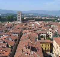 lucca lucca