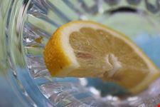 la coltivazione dei limoni