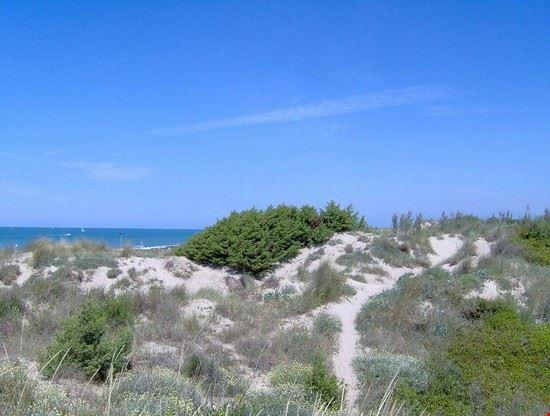 Oasi Dune di Tirrenia