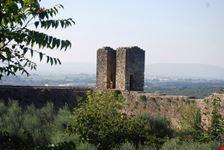 le mura (particolare)