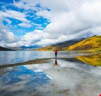 102289 lhasa lago yamdrok