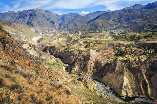 arequipa canyon del colca