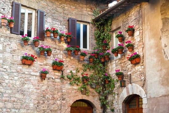 Foto assisi a assisi 550x367 autore redazione 33 di 46 - Il giardino dei ciliegi assisi ...