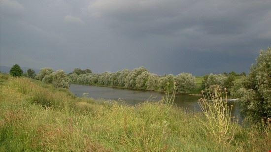 103137 signa fiume arno