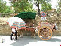 terrasini carretto siciliano