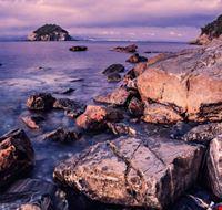 104472 rio marina spiaggia di frugoso
