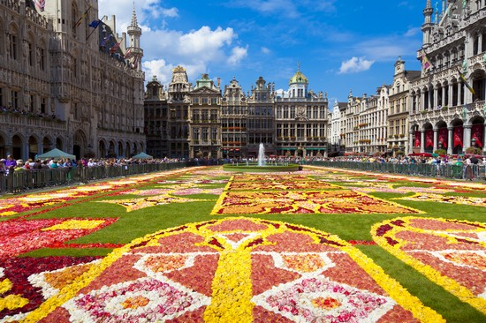 Tappeto Floreale Bruxelles : Tappeto di fiori a bruxelles
