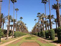 casablanca parc de la ligue arabe casablanca