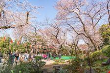 tokyo parco di ueno