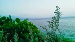 viaggio nella  sicilia incantata dei poeti milazzo