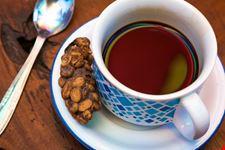 bali kopi luwak