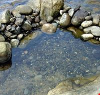 106607 barano d  ischia baia di sorgeto