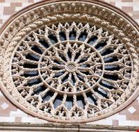 106687 l  aquila basilica di collemaggio
