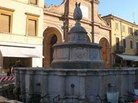 rimini la fontana della pigna a rimini