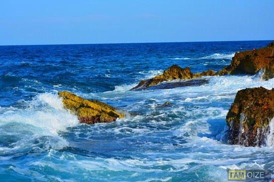 in mare