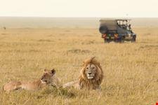nairobi safari kenya