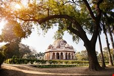 delhi lodi gardens