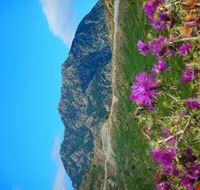 Montagna di Vernà