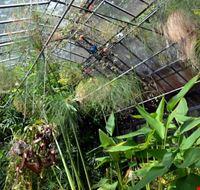109131 orto botanico hanbury dell universita di genova genova