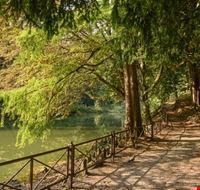 109429 monza parco di monza