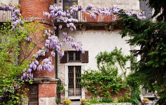 Foto giardino botanico di brera a milano autore redazione
