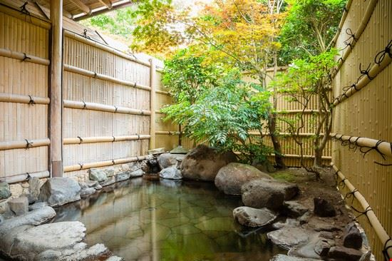tokyo onsen