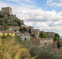 110129 roccastrada castello di montemassi