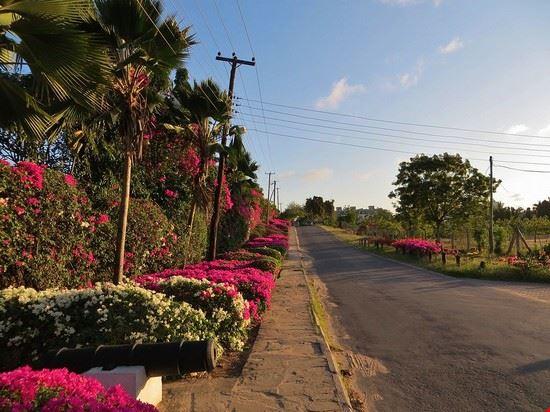 mombasa mount kenya road nyali