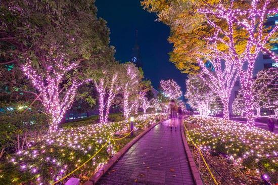 tokyo giardini