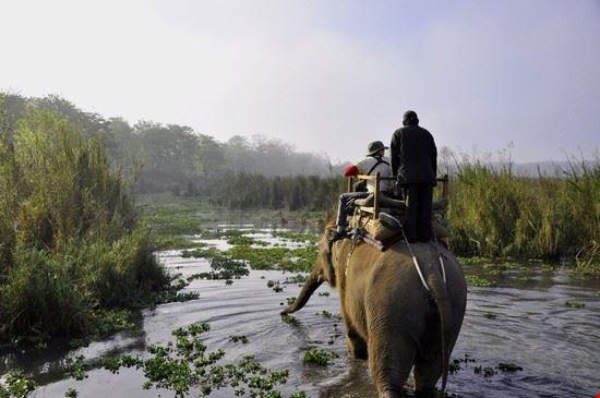 kathmandu parco nazionale di chitwan