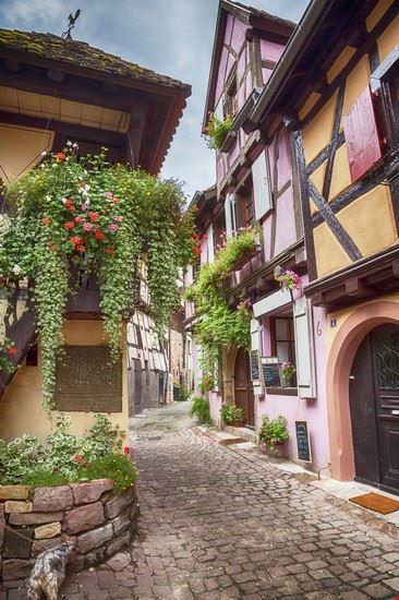 eguisheim colmar