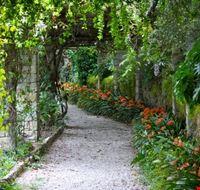 111254 giardini di hanbury ventimiglia