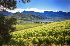 termeno sulla strada del vino escursioni