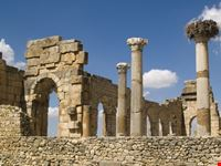 Volubilis Roman Old City