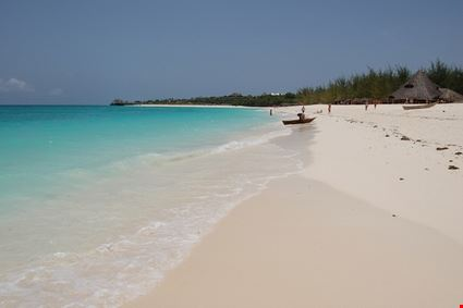 zanzibar the beautiful beach of the island