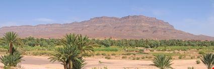 Oasis - Draa Valley