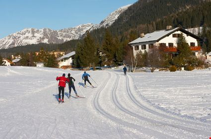 Cross-country skiers on a track