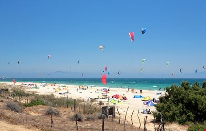 Beautiful white beach with kitesurfers and sunbathers