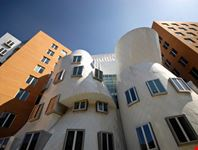 Frank O Gehry Stata Center