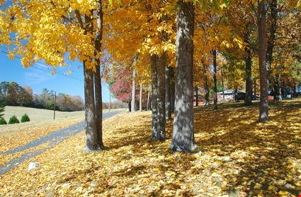 Helen's Fall,Atlanta