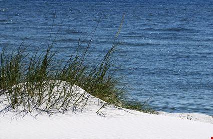 The beach on the Alabama coast