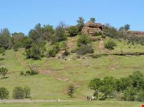 A green rolling hill in Chico's Bidwell park in northern California
